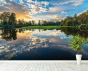 Wide Angle River Clouds Reflection wall mural in-room view