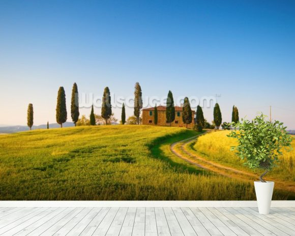 Tuscany Villa wall mural room setting