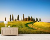 Tuscany Villa wall mural living room preview