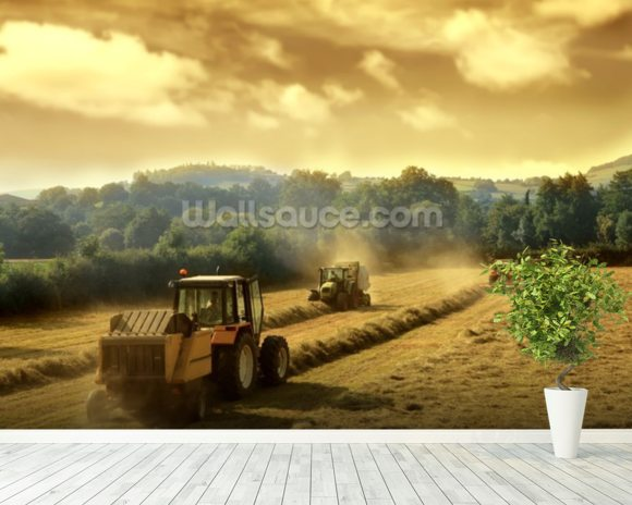Tractors wall mural room setting