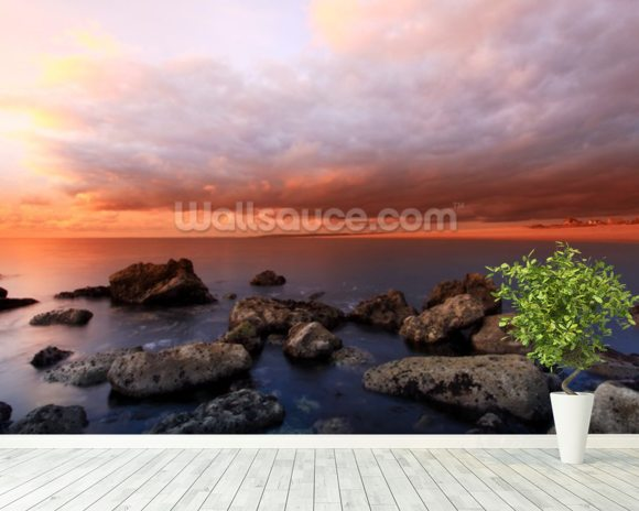 The Cove Sunset wall mural room setting