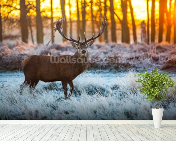 Red Deer Winter wall mural room setting