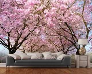 Japan photo wallpaper wall murals wallsauce for Cherry blossom tree mural