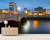 Dublin at Night wall mural living room preview