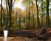 Colourful Autumn Woodland mural wallpaper kitchen preview