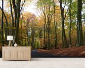 Colourful Autumn Woodland mural wallpaper living room preview