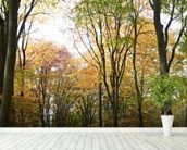 Colourful Autumn Woodland mural wallpaper in-room view