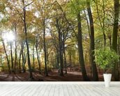Autumn Woodland wall mural in-room view