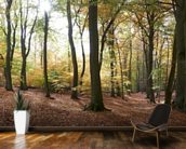 Autumn Forest Panoramic wallpaper mural kitchen preview