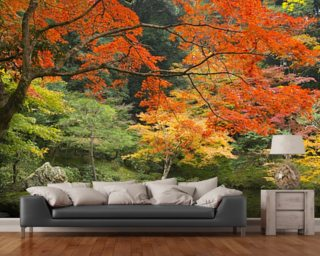 Tree wallpaper forest wallpaper murals wallsauce for Autumn forest wallpaper mural