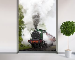 Steam Train In Motion Wall Mural Part 89