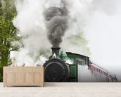 Steam Train in Motion wallpaper mural living room preview