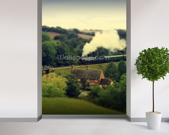 Steam Train Landscape wall mural room setting
