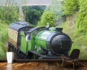 Steam Train in Countryside mural wallpaper kitchen preview