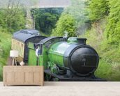 Steam Train in Countryside mural wallpaper living room preview