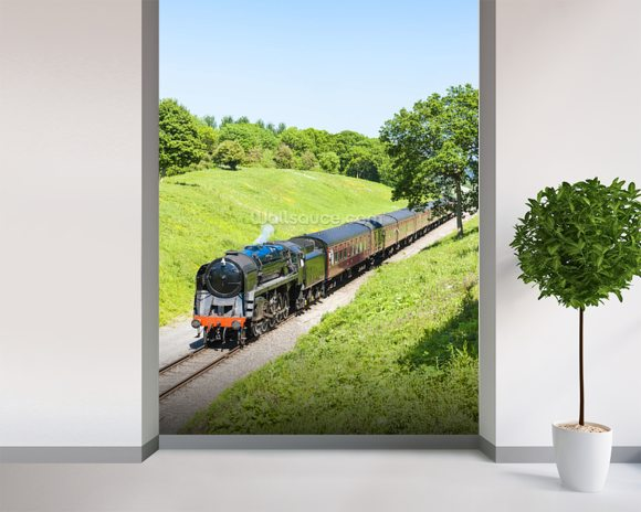 steam train wallpaper wall mural wallsauce usa