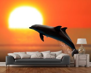 Dolphins at sunset wall mural