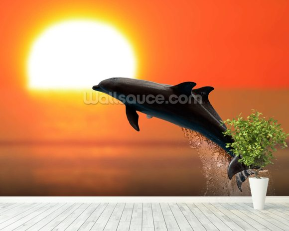 Dolphins at sunset wall mural room setting