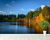 Autumn Lakeside wallpaper mural in-room view
