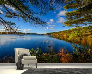 Forest Lake in Autumn mural wallpaper