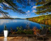Forest Lake in Autumn mural wallpaper kitchen preview