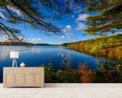 Forest Lake in Autumn mural wallpaper living room preview