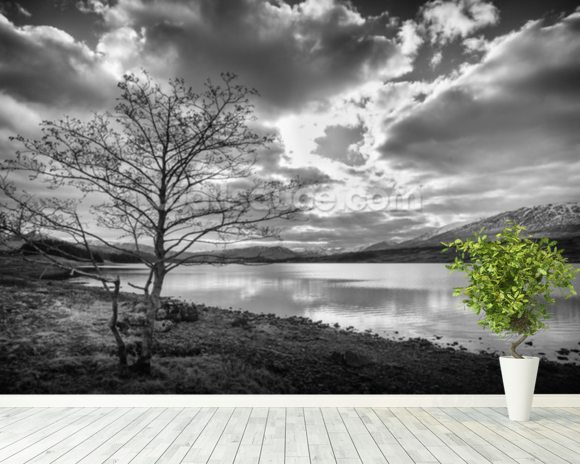 Loch Tulla mural wallpaper room setting