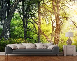 Bright Forest wall mural