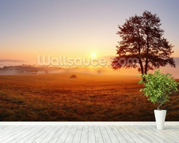 Meadow Sunset wall mural room setting