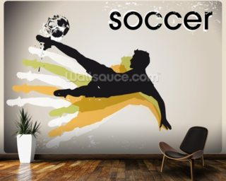Physical Education Wall Murals Wallpaper Wallsauce USA