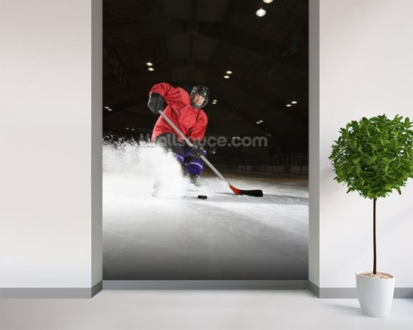Woman playing hockey. wall mural room setting