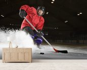 Woman playing hockey. wall mural living room preview