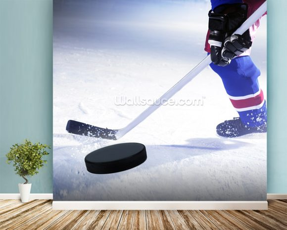 Ice Hockey Stick and Puck Wall Mural Ice Hockey Stick and Puck