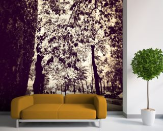Saturday and all it's beauty Wall Mural Wallpaper Wall Murals