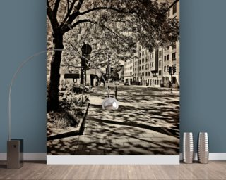 Shadows of the Past Wall Mural Wallpaper Wall Murals