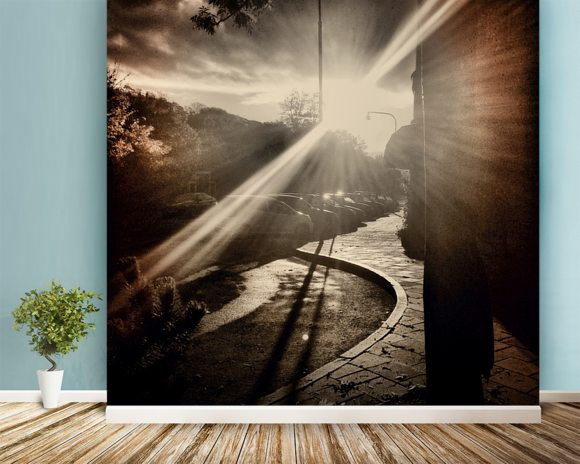 Autumn Sun mural wallpaper room setting