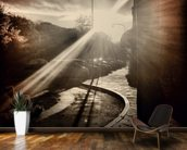 Autumn Sun mural wallpaper kitchen preview
