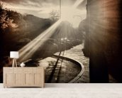 Autumn Sun mural wallpaper living room preview
