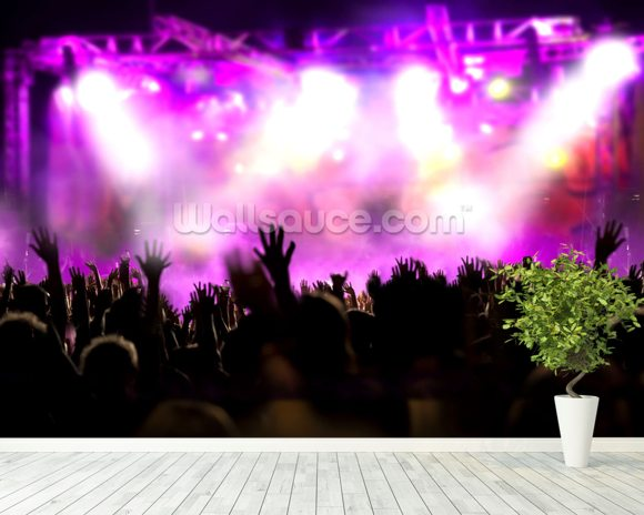 Music concert wallpaper wall mural wallsauce europe for Concerts at the mural
