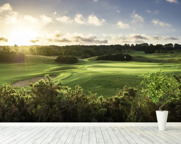 Seve's Sunrise, The Shire London, Hertfordshire, England wallpaper mural room setting