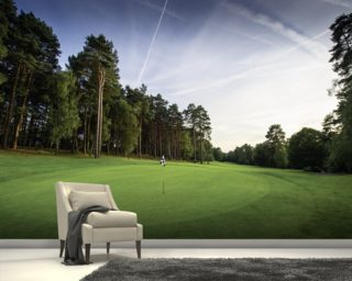 Sunset & Pine Trees, Pine Ridge Golf Club, Surrey, England Wallpaper Mural Wall Murals Wallpaper