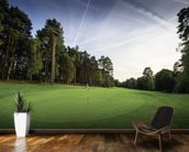 Sunset & Pine Trees, Pine Ridge Golf Club, Surrey, England wall mural kitchen preview