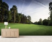 Sunset & Pine Trees, Pine Ridge Golf Club, Surrey, England wall mural living room preview