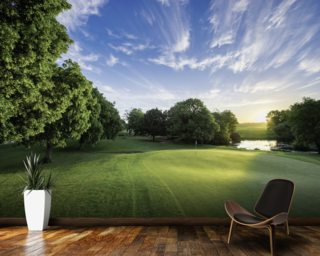 Dawn Sunburst, The Hertfordshire Golf & Country Club, England Mural Wallpaper Wall Murals Wallpaper
