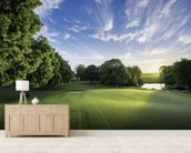 Dawn Sunburst, The Hertfordshire Golf & Country Club, England wallpaper mural living room preview