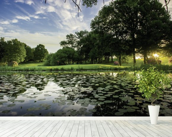 Dawn Lily Pond, The Hertfordshire Golf & Country Club, England mural wallpaper room setting