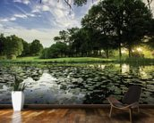 Dawn Lily Pond, The Hertfordshire Golf & Country Club, England mural wallpaper kitchen preview