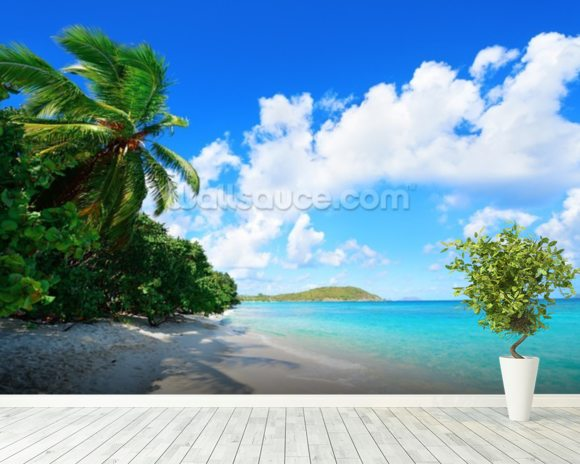 Virgin Islands Beach wall mural room setting
