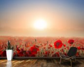 Red Poppy Fields mural wallpaper kitchen preview