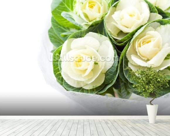Cabbage Flowers mural wallpaper room setting